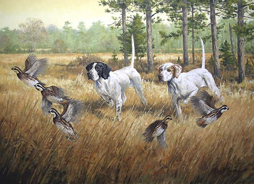 Quail hunting paintings - photo#10