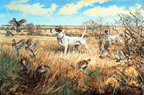 Quail hunting paintings - photo#6