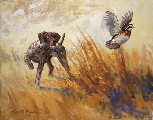 Quail hunting paintings - photo#22