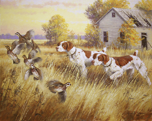 Quail hunting paintings - photo#4
